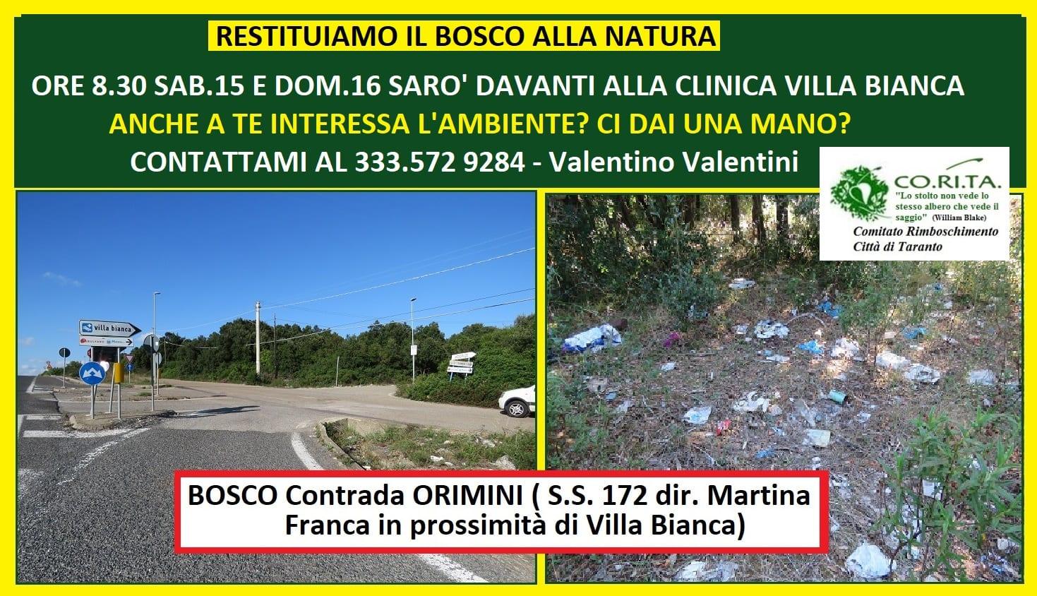 Corita-Valentini-Agosto-2020-Pulizia-Bosco