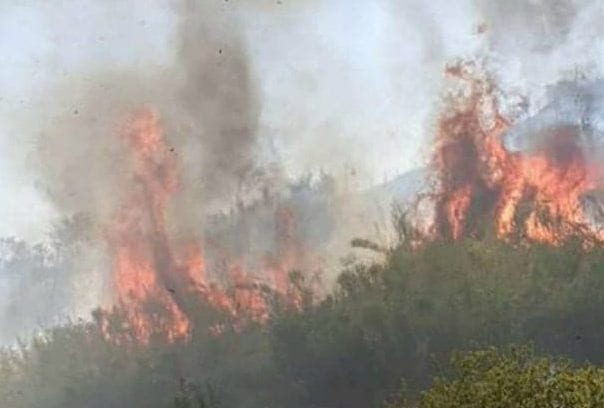 incendio-monte-ciocci-prati-1596115754776-638x425-e1596813419920